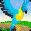 Parrot Simulator icon