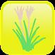 シンプル植物リスト〜身近な野草〜 - Androidアプリ