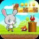 Super Bunny World Adventure