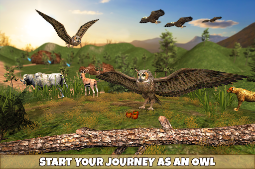 Wild Owl Bird Family Survival: Bird Simulator 3.0 screenshots 5