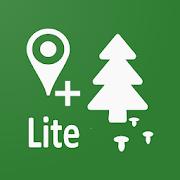 Forest Navigator Lite