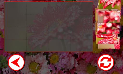 flowers puzzles screenshot 3