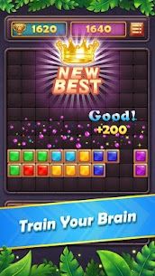 Block Puzzle Gem: Jewel Blast 2020 3