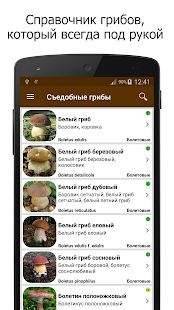 Грибы Screenshot