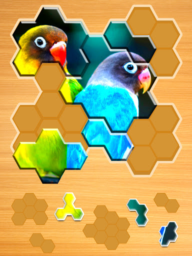 Jigsaw Puzzles Hexa ud83eudde9ud83dudd25ud83cudfaf 2.2.7 screenshots 17