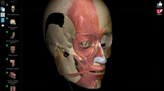 Anatomy Learning - 3D Anatomy Atlas 2.1.329 Screenshots 8