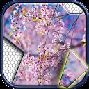 Jigsawnoi: Jigsaw puzzles redefined