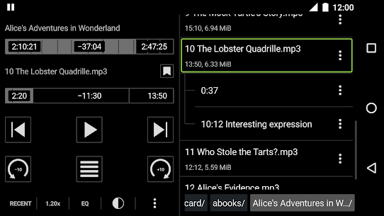 Simple Audiobook Player MOD (Paid) 4