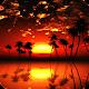 papéis de parede do pôr do sol para PC Windows