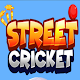 Street crickets para PC Windows