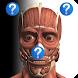 Anatomy Quiz Free - Androidアプリ