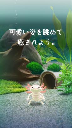 癒しのウーパールーパー育成ゲームのおすすめ画像3